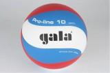 Lopta volejbal PRO LINE 10 5121S