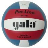 Lopta volejbal PRO-LINE BV5211L